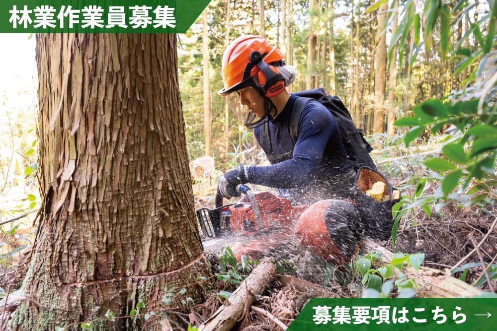 林業作業員募集